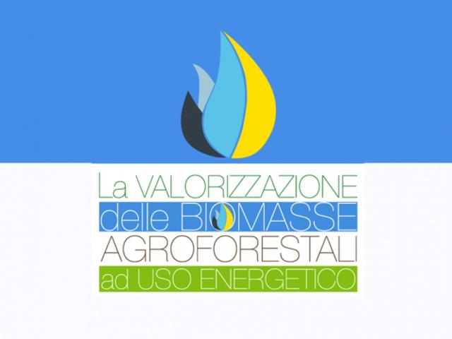 La Valorizzazione delle Biomasse